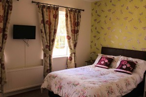 Orchard Grove Images-Room 4